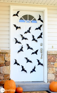 Bats-and-Spiders-3